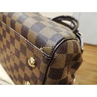 LOUIS VUITTON Damier Ebene Trevi PM Bag