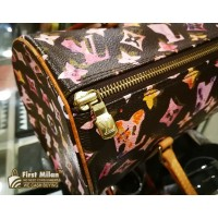 LOUIS VUITTON Monogram Watercolor Papillon 30